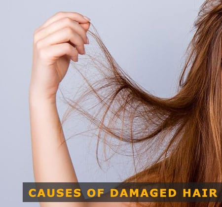 Featured Image of Causes of Damaged Hair