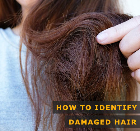 Featured Image of How to Identify Damaged Hair